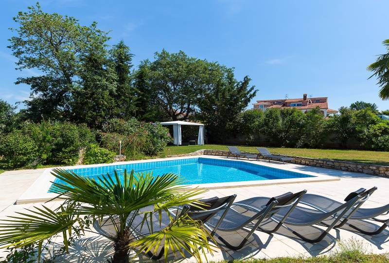 Apartment Gala Premium with pool